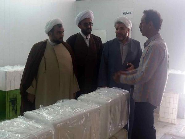 بازدید از کشتارگاه دام استان فارس