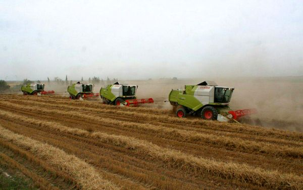 پرداخت اعتبار ویژه برای رونق واحدهای تولیدی بخش کشاورزی