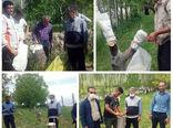اجرای عملیات سرشاخه کاری و تعویض تاج درختان گردو در شهرستان ورزقان