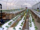 رشد ۵ برابری صدور محصولات کشاورزی به خارج، نمادی از رهیافتهای تولید محور اصفهان