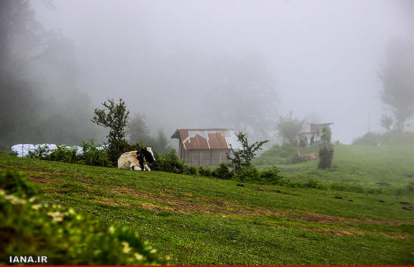 روستای ییلاقی اولسبلانگا