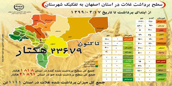 آغاز برداشت گندم و جو در مزارع اصفهان