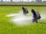 مصرف کود حوزه کشاورزی کردستان تاثیری در کیفیت آب ندارد