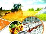 تحقق 100درصد تعهد اشتغالزایی کشاورزی دراستان قزوین