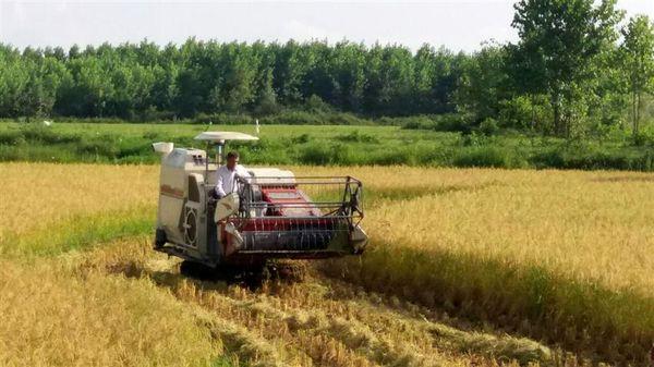 جذب بیش از ۳۷ میلیاردی تسهیلات بانکی توسعه مکانیزاسیون کشاورزی در شفت