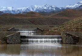 اتمام عملیات کنترل فارو به مساحت 50 هکتار از مراتع روستایی حوضه آبخیزداری ارمیان