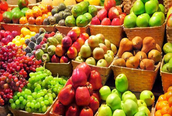 ۳۱۵ هزار تن انواع محصول باغی در خراسان شمالی تولید شد