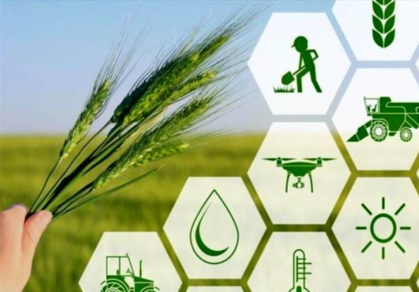 ارزش سالانه تولیدات بخش کشاورزی 68 هزار میلیاردریال است