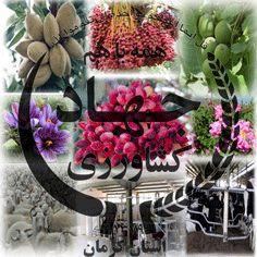 فعالیت پایگاه مقاومت بسیج شهید حسین قدیری در جهاد کشاورزی شهرستان انار آغاز خواهد شد.