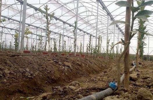 پرداخت 7500 میلیونی تسهیلات اشتغال روستایی به دو طرح در میاندورود
