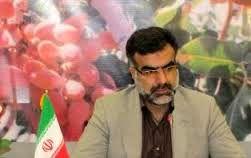 رئیس سازمان جهاد کشاورزی فارس عازم قزاقستان شد