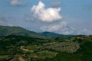 اعتبارات توسعه، احیای جنگلها و مراتع تخصیص یافت