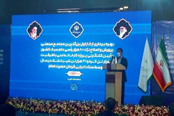 ۱۱درصد شیر مصرفی کشور در استان تهران تولید می شود