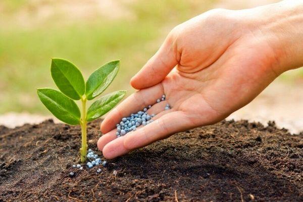 ۲ میلیون و ۸۸۰ هزار تن کود کشاورزی درکشور تامین شد
