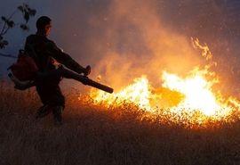 آتشسوزی جنگلهای بلوط بلند چهارمحال و بختیاری دوباره مهار شد
