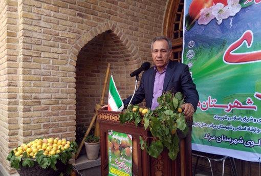آذربایجان شرقی رتبه اول تولید  زردآلو در کشور