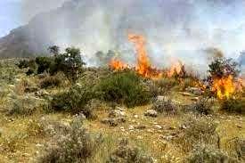 افزایش سطح هشدارهای منابع طبیعی خراسان شمالی برای جلوگیری از آتشسوزی در عرصهها