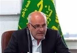 تولید گندم امسال در استان سمنان به 117 هزار تن میرسد