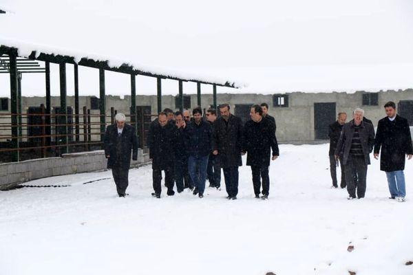 بازدید معاون استاندار آذربایجان غربی از شهرک کشاورزی و مجتمع کشتارگاه تبدیلی و صنعتی شهرستان ارومیه