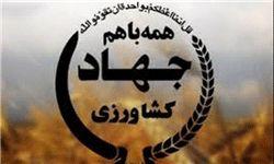سنگرسازان بی سنگر سازمان جهاد کشاورزی استان کرمان در هشت سال دفاع مقدس حماسه آفریدند