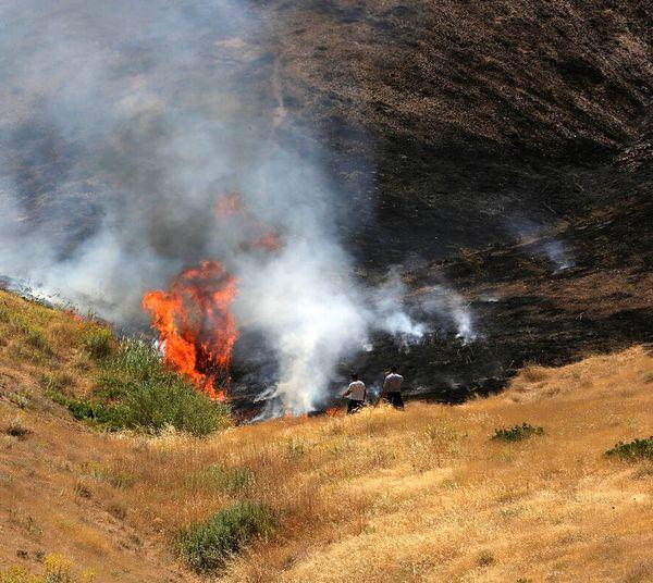 کاهش ۹۷ درصدی وقوع حریق در جنگل ها و مراتع ایلام