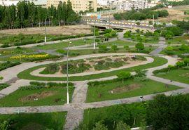 379 هزار اصله نهال در استان سمنان غرس شد