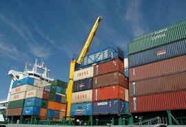 افزایش 22 درصدی ارزش صادرات محصولات کشاورزی