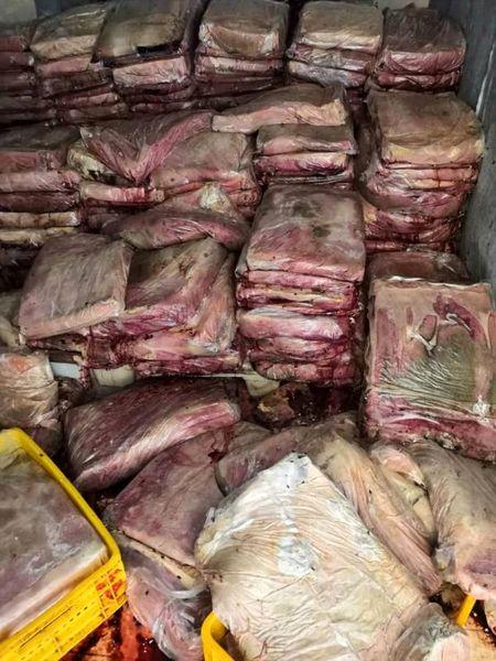 معدوم سازی 4208 کیلوگرم خمیر مرغ به علت آلودگی سالمونلایی