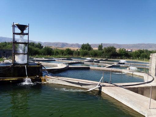 ظرفیتهای نهفته آبزی پروری در شهرستان اهر
