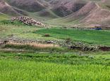 سازمان جنگلها اجاره مرتع به قطریها را تکذیب کرد