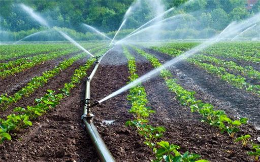 سیاست بهرهوری محصول، تولید اقتصادی بخش کشاورزی را در بر دارد