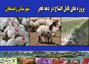 بهرهبرداری از 4 طرح کشاورزی و دامپروری در شهرستان رفسنجان