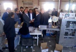 بازدید معاونین وزیر جهاد کشاورزی از طرح بسته بندی پسته صادراتی در شهرستان رفسنجان