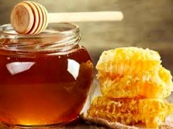 افزایش تولید عسل در استان گیلان