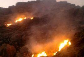 اقدامات سازمان جنگلها برای اطفاء و مهار آتشسوزیهای اخیر جنگلها و مراتع