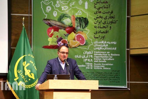 سهم 80 درصدی تجارت ایران و اوراسیا در اختیار بخش کشاورزی است