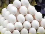 تولید بالغ بر 6 هزار تن تخم مرغ در سه ماهه اول سال جاری در خراسان جنوبی