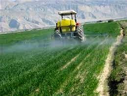 کشاورزان خراسان شمالی تا ۱۰ روزه آینده مزارع گندم را سمپاشی کنند