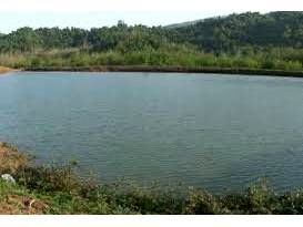 ذخیره آبی 5 میلیون مترمکعبی آببندان های قائم شهر