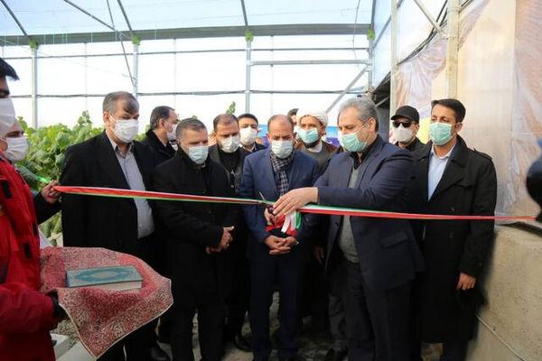 افتتاح دو واحد گلخانه در شهرک گلخانهای امام رضا(ع) در خراسان شمالی