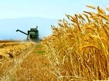 جزئیات هزینه تولید هرکیلوگرم گندم در سال زراعی 99-98