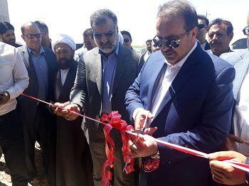 """اولین """"واحد پرورش مرغ تخمگذار"""" در شهرستان داراب افتتاح شد"""