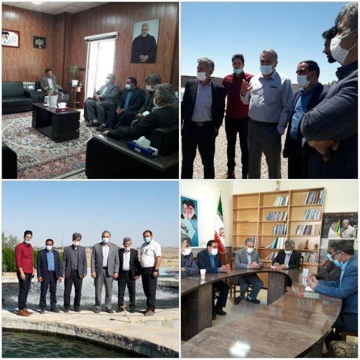 شهرستان شهربابک در جذب سرمایه و توسعه مزارع پرورش ماهی پتانسیل بالایی دارد