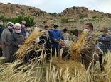 برگزاری جشن «خداقوت کشاورز» در شهرستان بجنورد