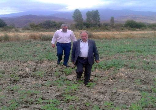 بهره برداری 150 هکتار اراضی کشاورزی از سیستم آبیاری کم فشار در شهرستان خداآفرین