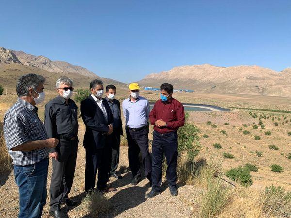 بازدید مشاور وزیر جهاد کشاورزی از شرکت کشت و صنعت شهمیرزاد