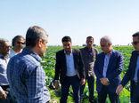 طرح ۱۲ هزار هکتاری احیاء دشت میناب از شاخصترین پروژههای دهه فجر است