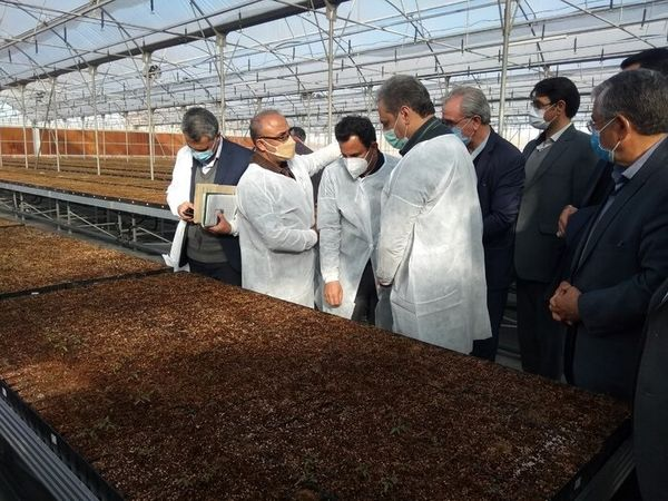 ۵۰۰ هزار هکتار از اراضی به نفع کشاورزان رفع تداخل شد