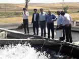 شهرستان ورزقان در مسیر توسعه و رونق تولید آبزی پروری قرار دارد