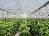 اعطای تسهیلات احداث گلخانه با نرخ سود 7 درصد و بازپرداخت 6 ساله